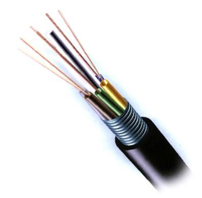 internet cap quang